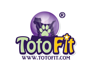 TOTO FIT_final_2 with R